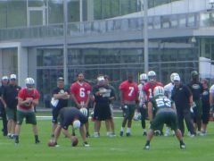 Matt Simms, Mark Sanchez, & Geno Smith