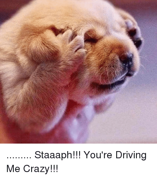 n-staaaph-youre-driving-me-crazy-16180145.png.f14f539bd6574f1083d08d5067c84383.png